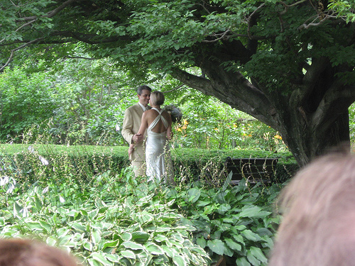 wedding arch3