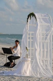 wedding arch2