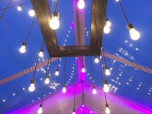 Edison-Chandelier-in-Clear-Canopy rental in Utah