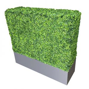 Artificial Boxwood Hedge for rent in Salt Lake City Utah