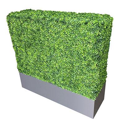 Artificial Boxwood Hedge for rent in Salt Lake City Utah