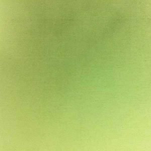 Nova Solid Apple Green Linen for Rent in Salt Lake City Utah