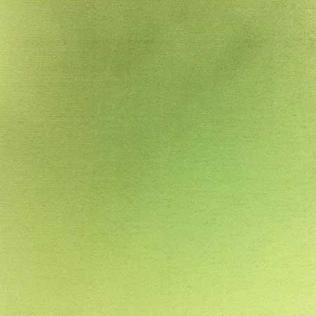 Nova Solid Apple Green Linen for Rent in Salt Lake City Utah