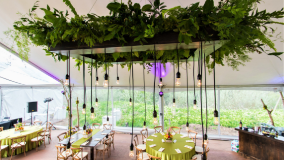 hanging plant with lights strewn from it inside of a wedding reception tent in Utah